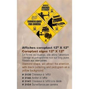 AFFICHE CORO SURVEILLANCE PAR CAMERA-12