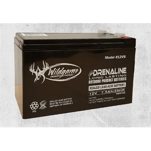 12 Volt Rechargeable Battery WG12VB1