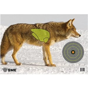 VITAL POINT TARGET COYOTE